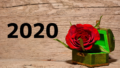 2020年 活動スケジュール